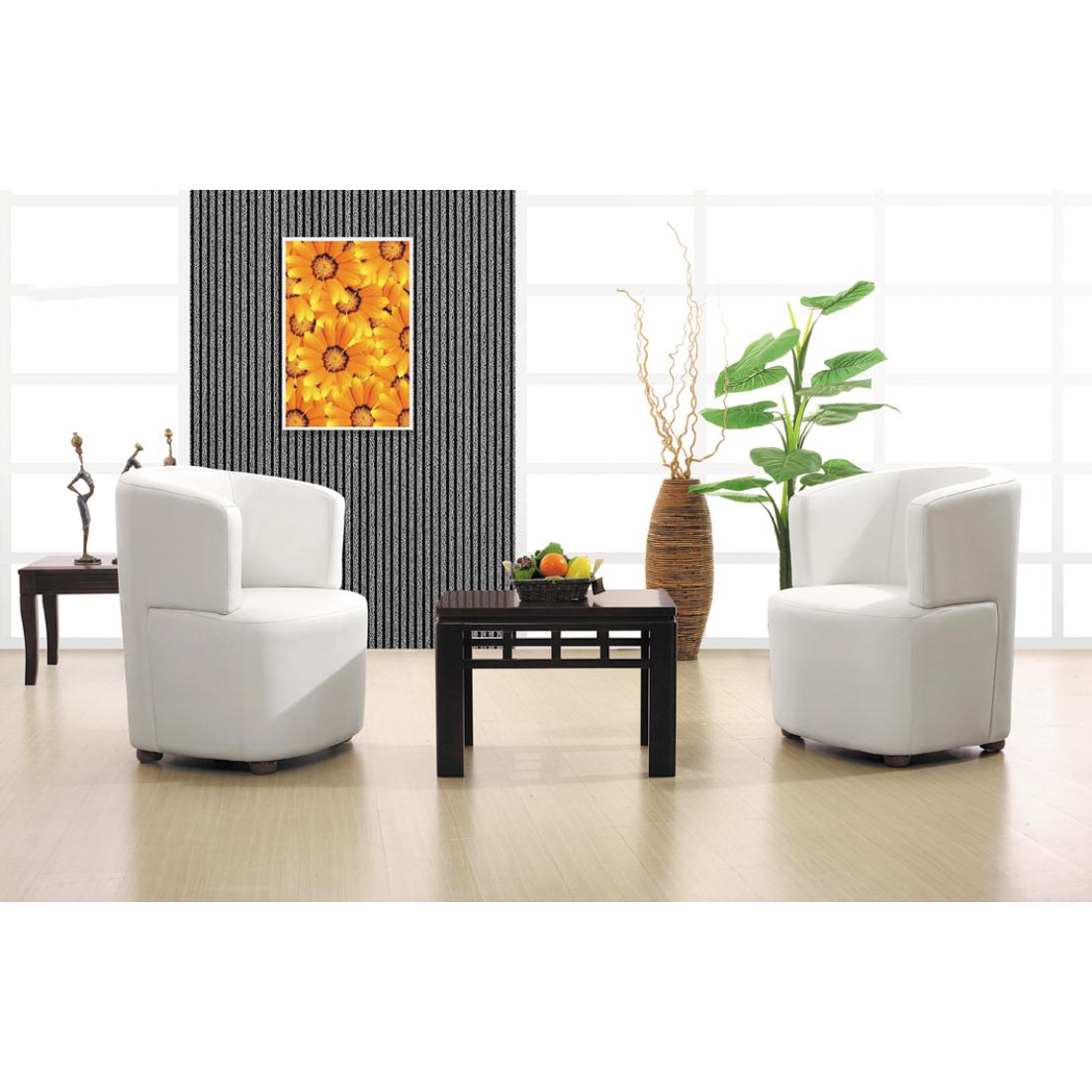 时尚系列沙发SF-SS150117